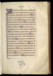 Illuminated Initial And Border, In Ranulf Higden's 'Polychronicon'